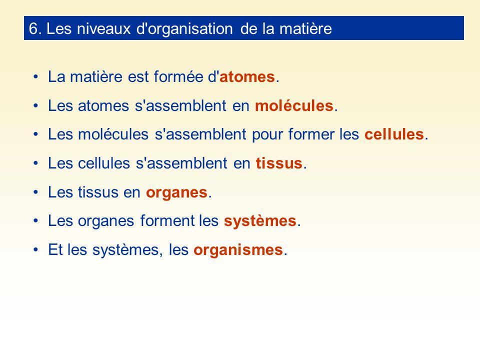 6. Les niveaux d organisation de la matière
