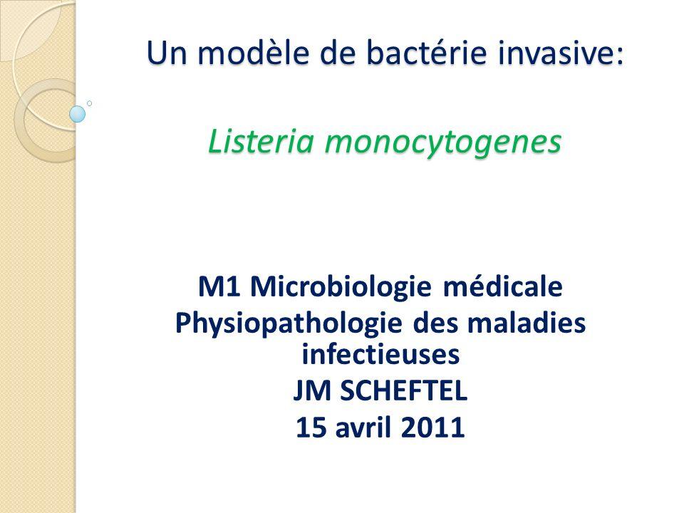 Un modèle de bactérie invasive: Listeria monocytogenes