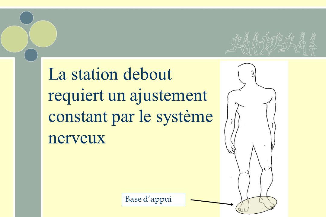 La station debout requiert un ajustement constant par le système nerveux