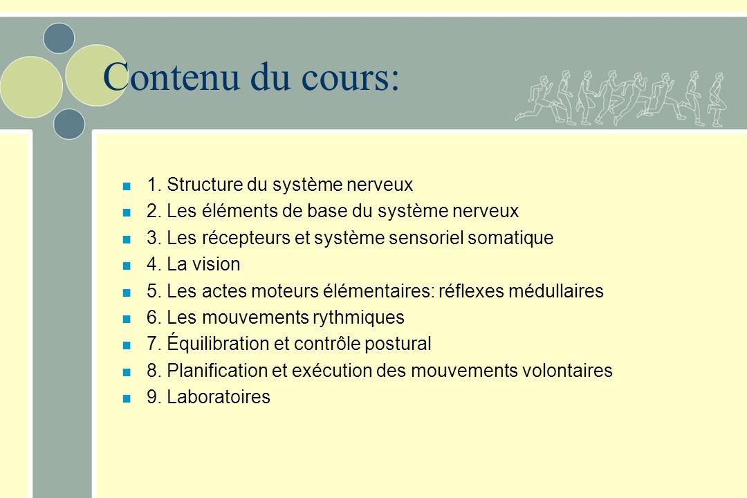 Contenu du cours: 1. Structure du système nerveux