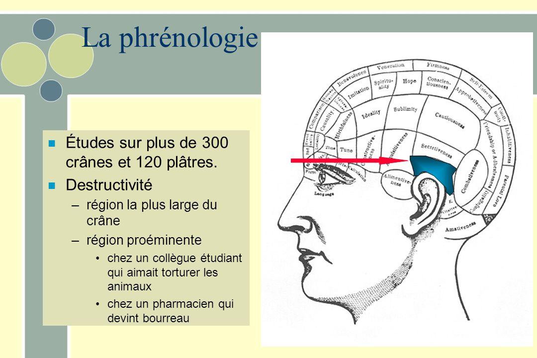 La phrénologie Études sur plus de 300 crânes et 120 plâtres.