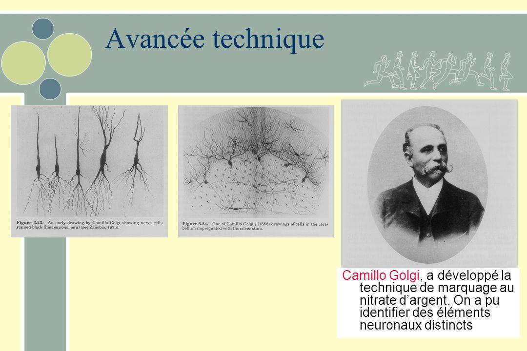 Avancée technique Camillo Golgi, a développé la technique de marquage au nitrate d'argent.