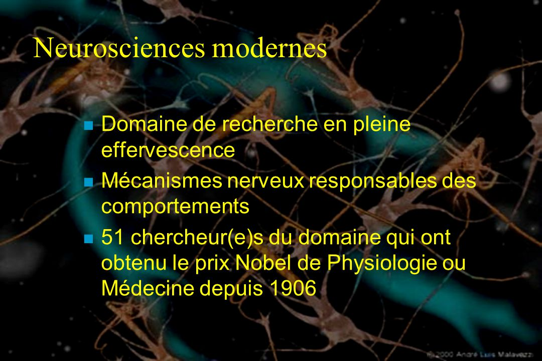 Neurosciences modernes