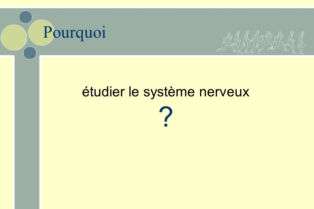 étudier le système nerveux