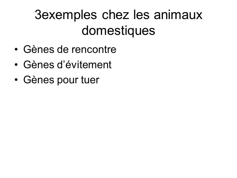 3exemples chez les animaux domestiques