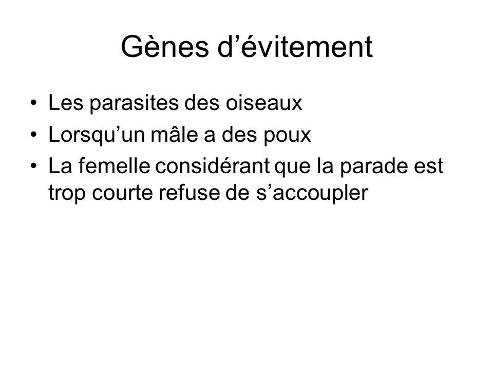 Gènes d'évitement Les parasites des oiseaux Lorsqu'un mâle a des poux