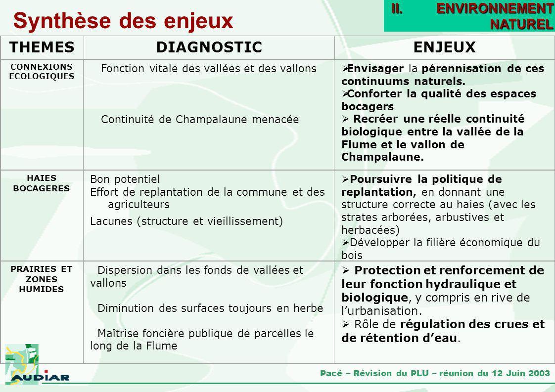 Synthèse des enjeux THEMES DIAGNOSTIC ENJEUX ENVIRONNEMENT NATUREL