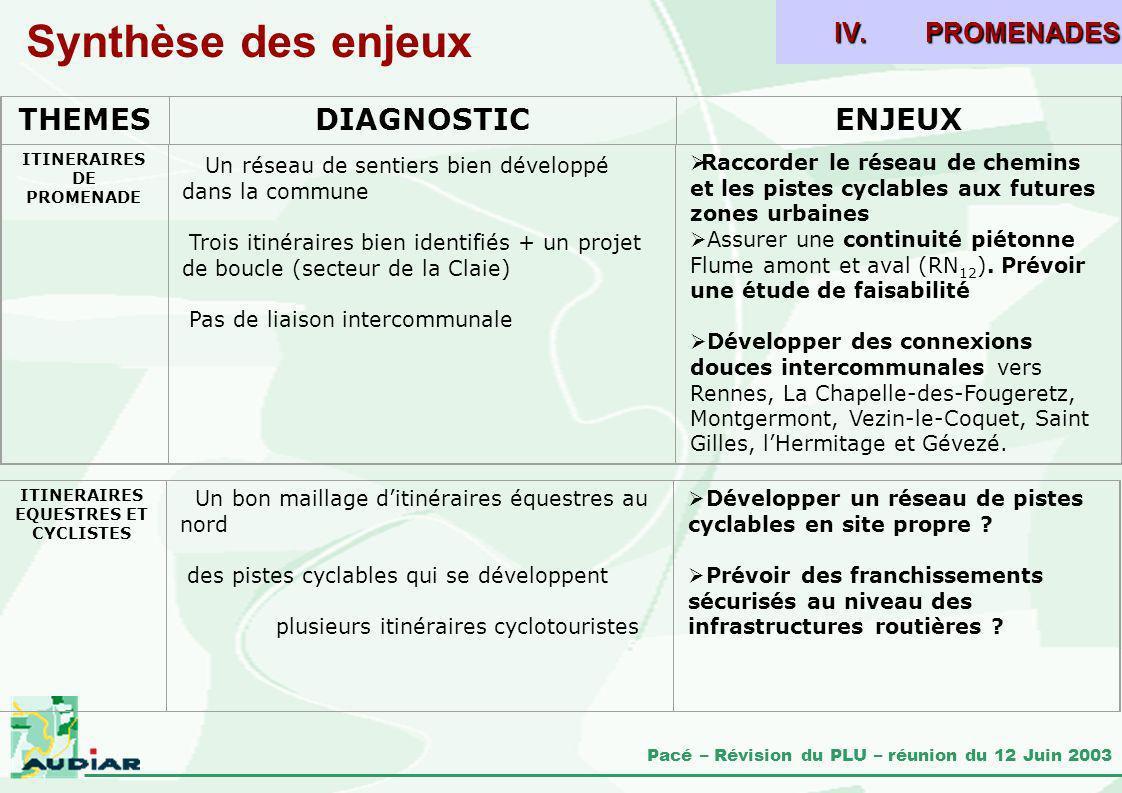 Synthèse des enjeux THEMES DIAGNOSTIC ENJEUX PROMENADES