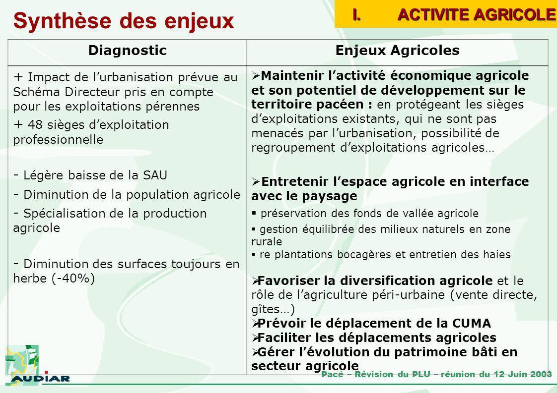 Synthèse des enjeux ACTIVITE AGRICOLE Diagnostic Enjeux Agricoles