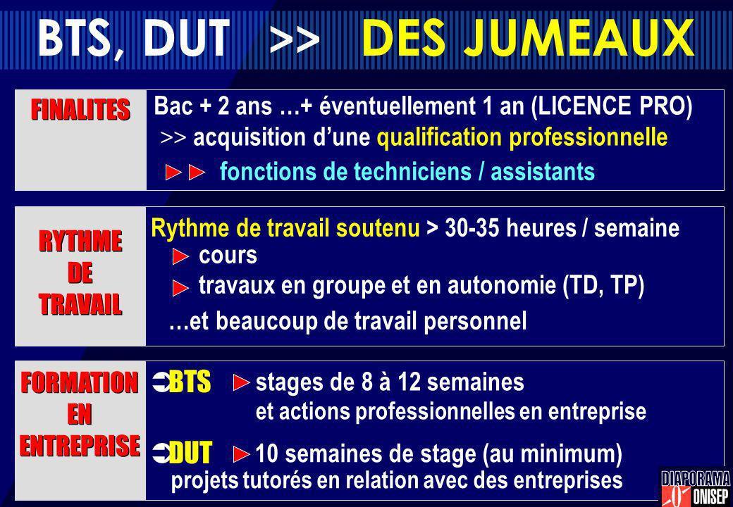BTS, DUT >> DES JUMEAUX