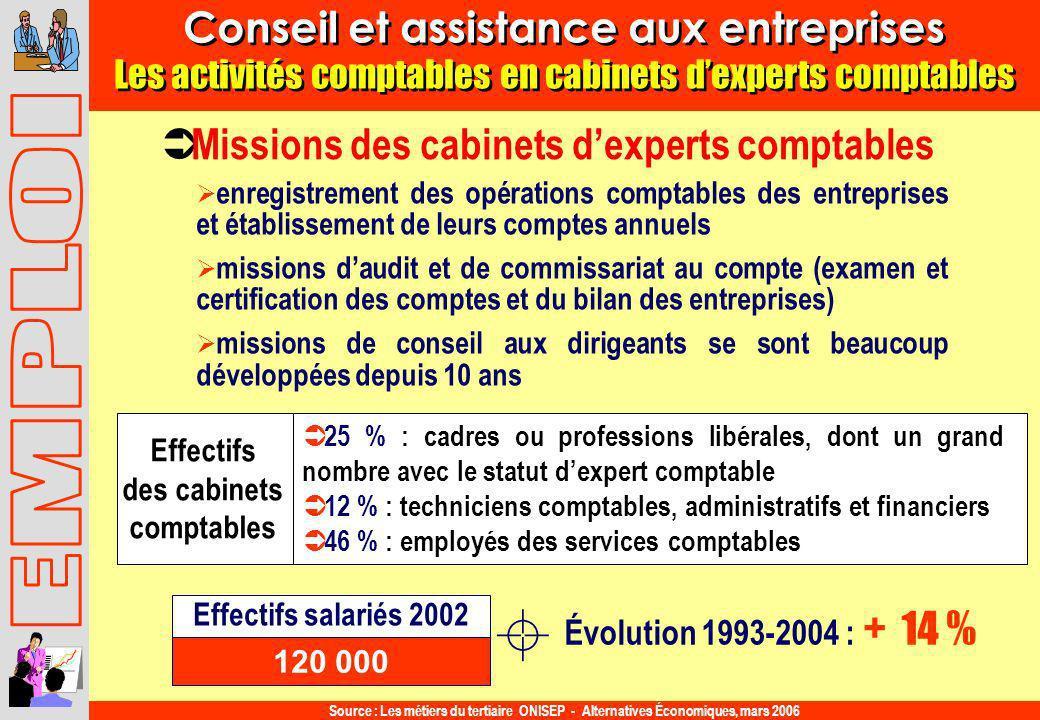Conseil et assistance aux entreprises des cabinets comptables