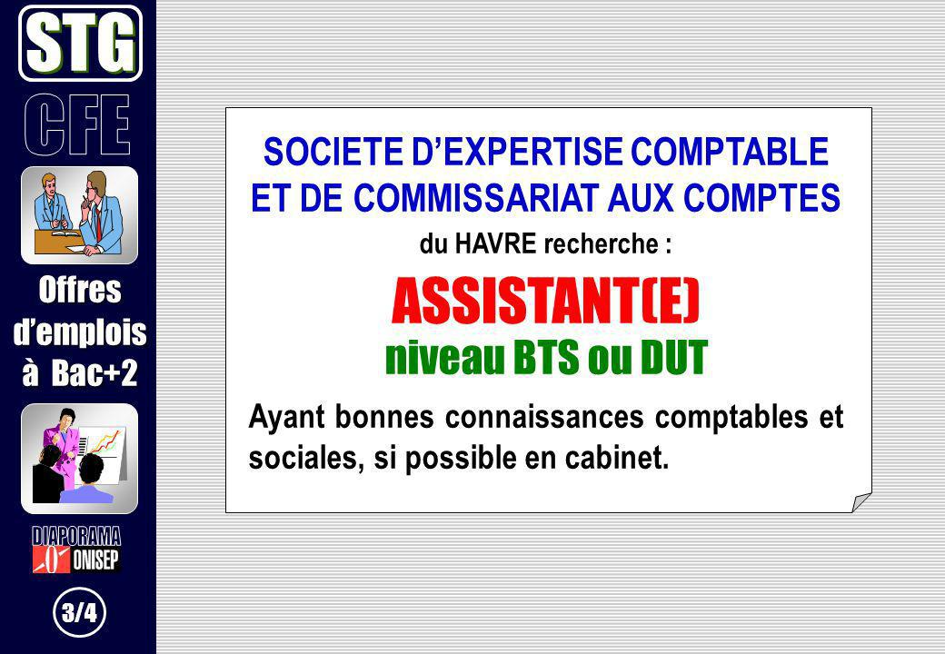 SOCIETE D'EXPERTISE COMPTABLE ET DE COMMISSARIAT AUX COMPTES