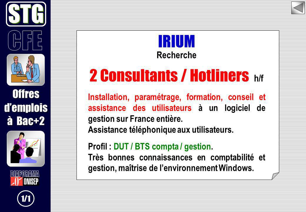 2 Consultants / Hotliners h/f
