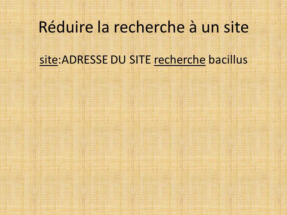 Réduire la recherche à un site
