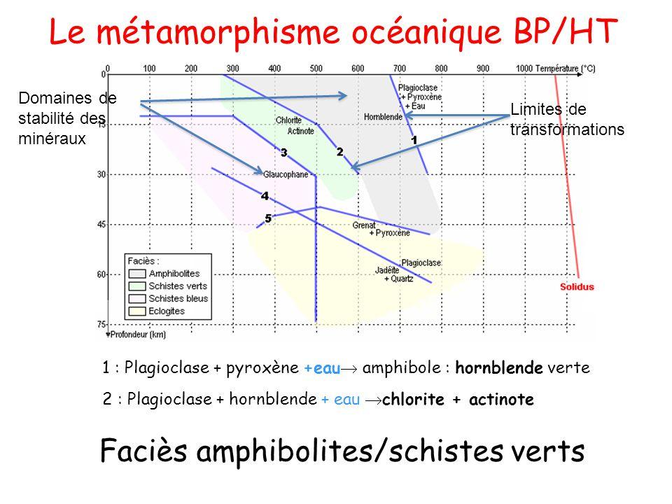 Faciès amphibolites/schistes verts
