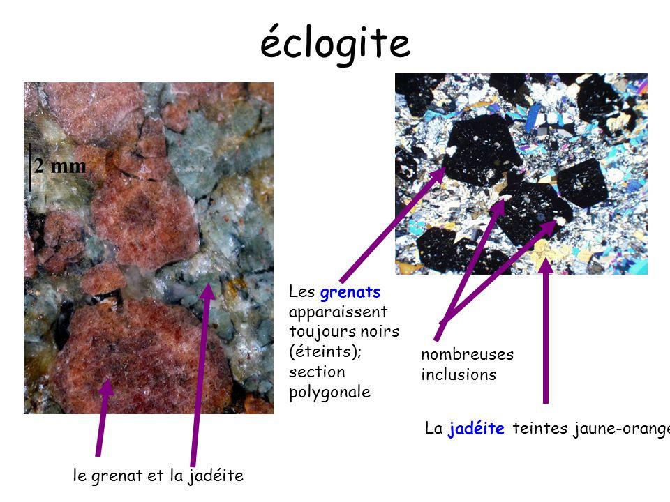 éclogite Les grenats apparaissent toujours noirs (éteints); section polygonale. nombreuses inclusions.