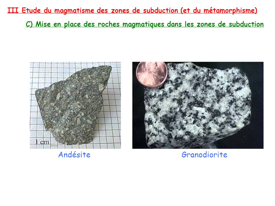Andésite Granodiorite