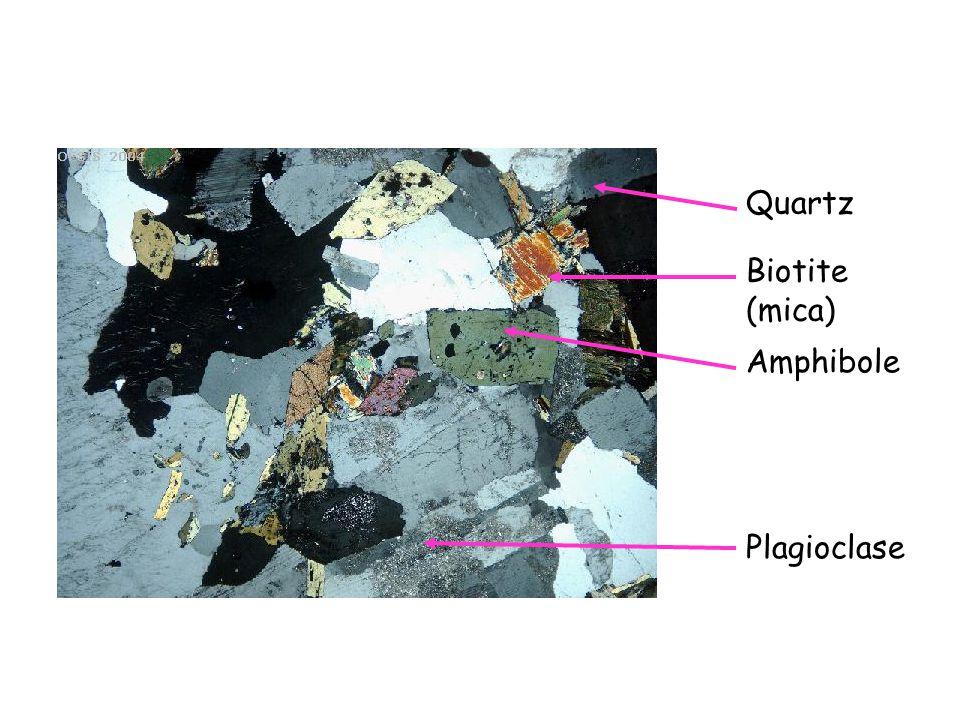 Quartz Biotite (mica) Amphibole Plagioclase