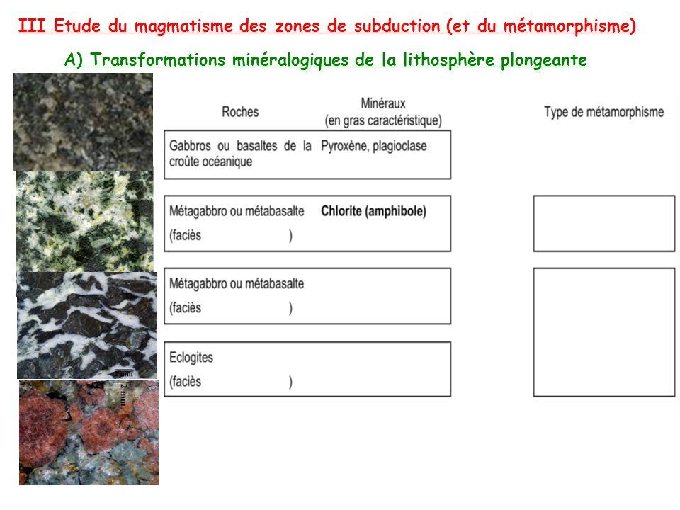 III Etude du magmatisme des zones de subduction (et du métamorphisme)
