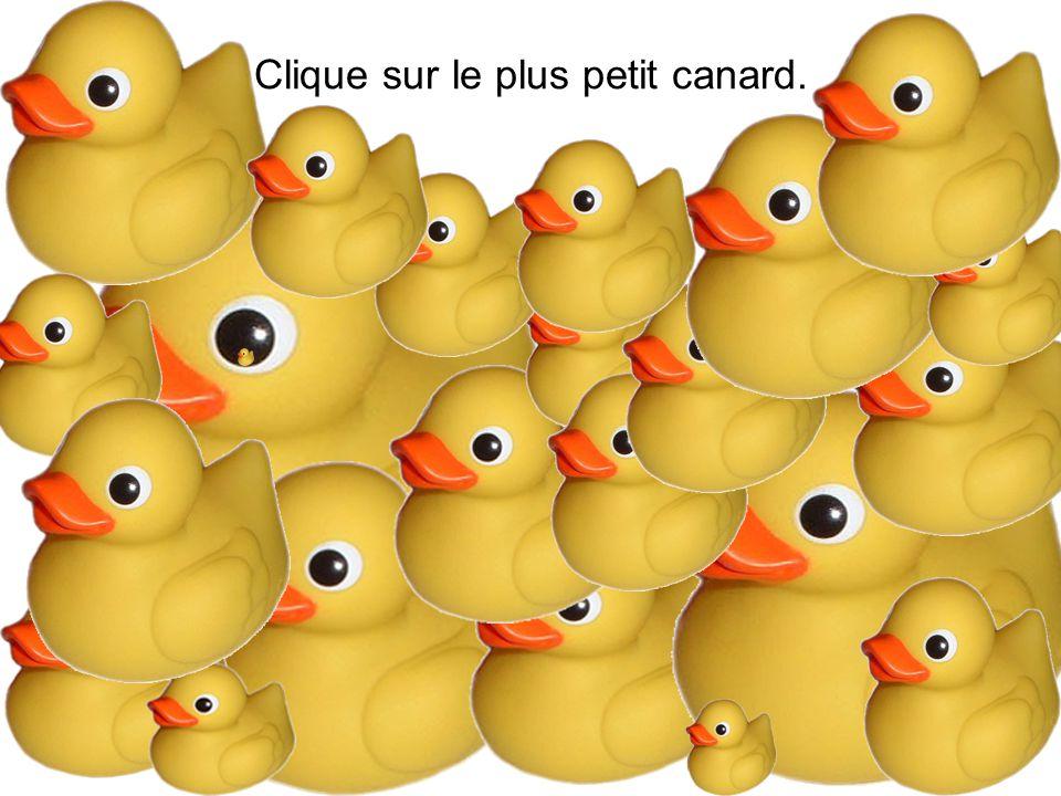 Clique sur le plus petit canard.