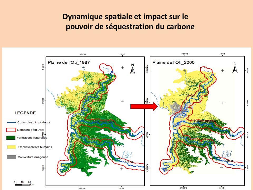 Dynamique spatiale et impact sur le pouvoir de séquestration du carbone