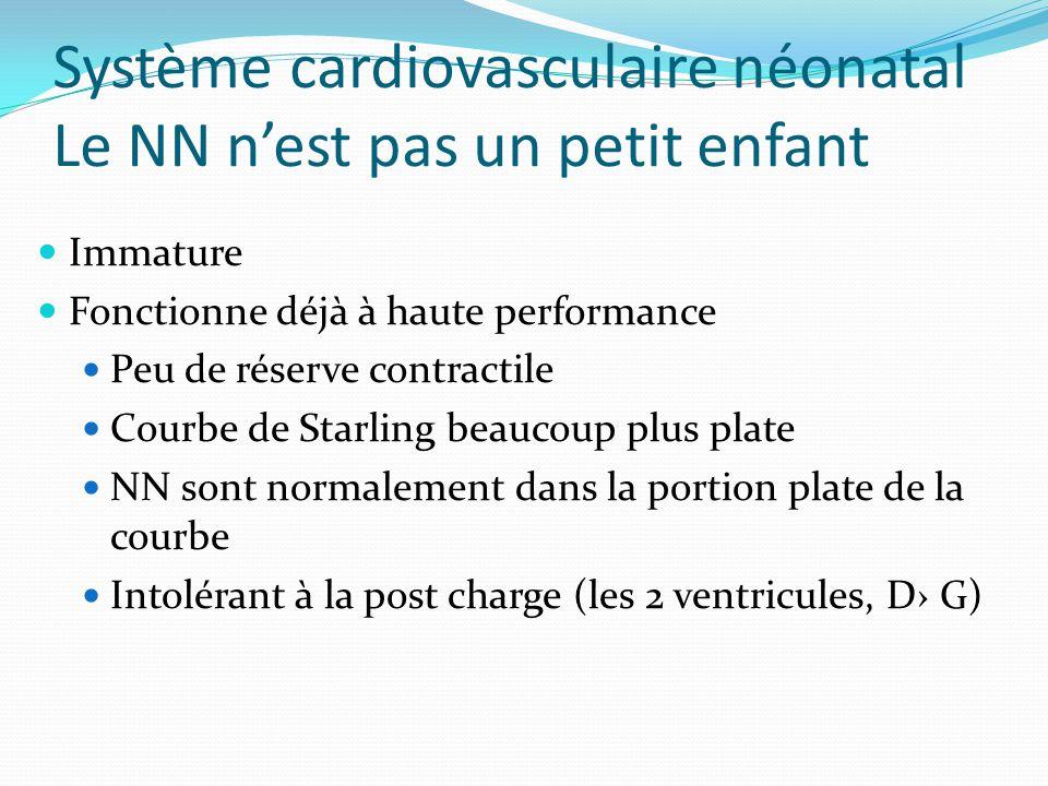 Système cardiovasculaire néonatal Le NN n'est pas un petit enfant
