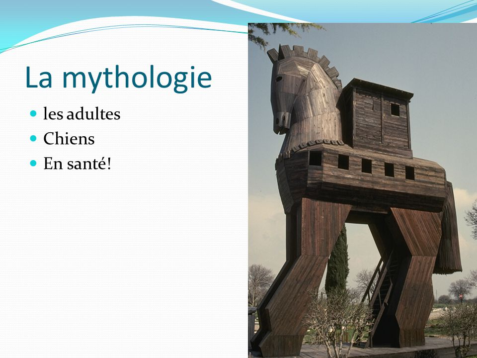 La mythologie les adultes Chiens En santé!