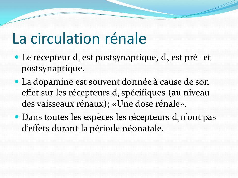 La circulation rénale Le récepteur d1 est postsynaptique, d2 est pré- et postsynaptique.