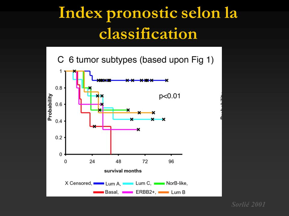 Index pronostic selon la classification