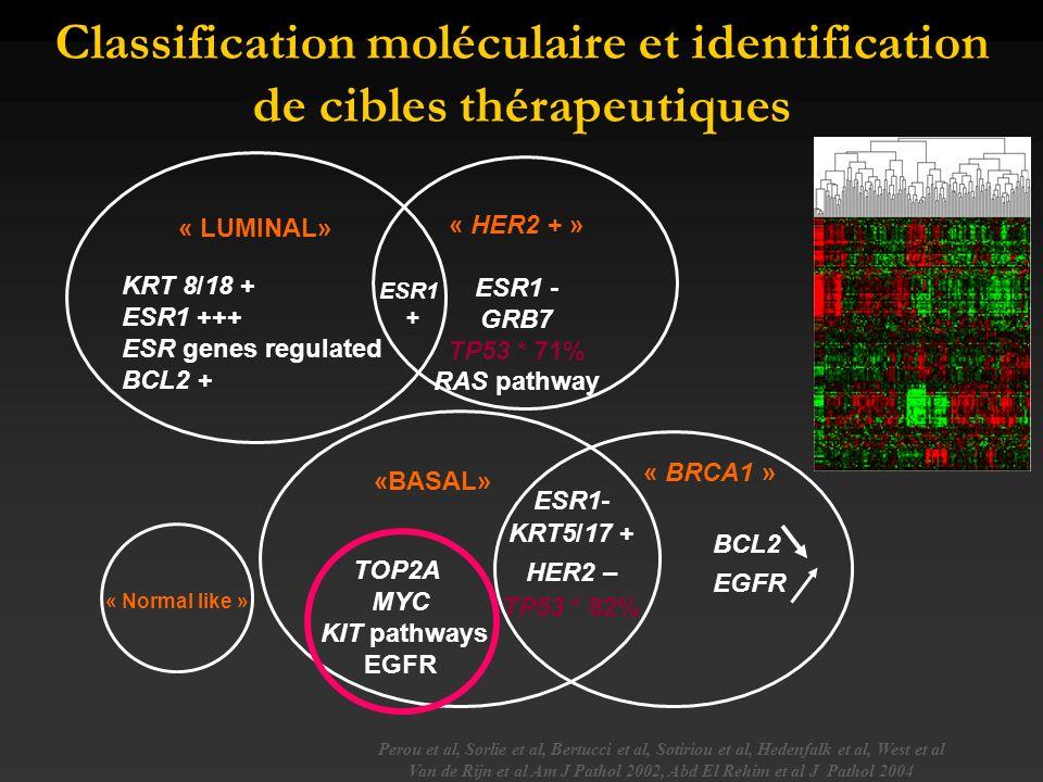 Classification moléculaire et identification de cibles thérapeutiques
