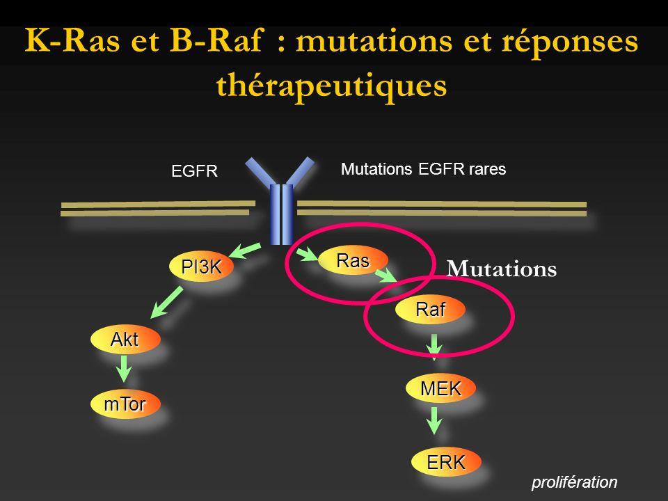 K-Ras et B-Raf : mutations et réponses thérapeutiques