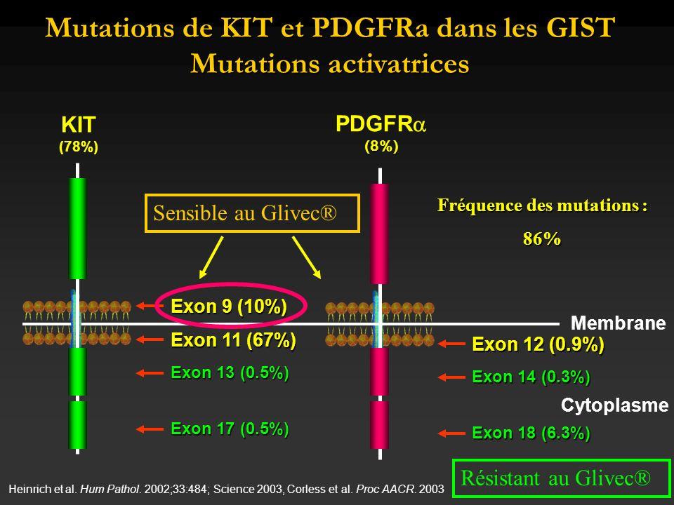 Mutations de KIT et PDGFRa dans les GIST Mutations activatrices
