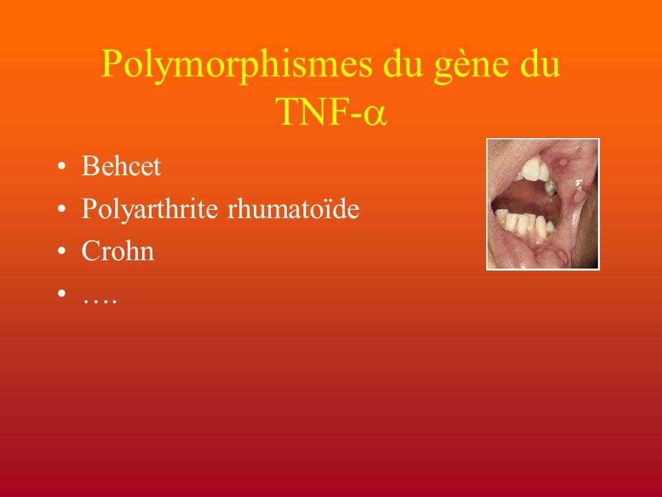 Polymorphismes du gène du TNF-a