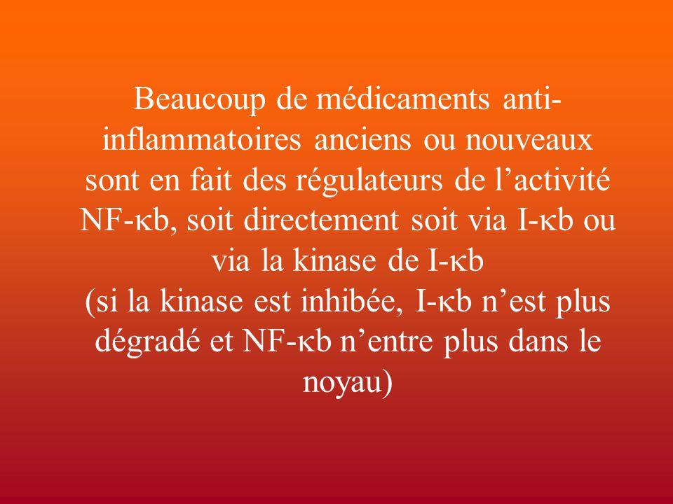 Beaucoup de médicaments anti-inflammatoires anciens ou nouveaux sont en fait des régulateurs de l'activité NF-kb, soit directement soit via I-kb ou via la kinase de I-kb (si la kinase est inhibée, I-kb n'est plus dégradé et NF-kb n'entre plus dans le noyau)