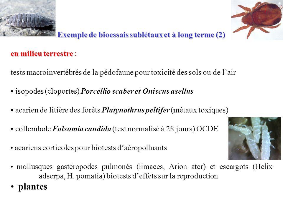 Exemple de bioessais sublétaux et à long terme (2)