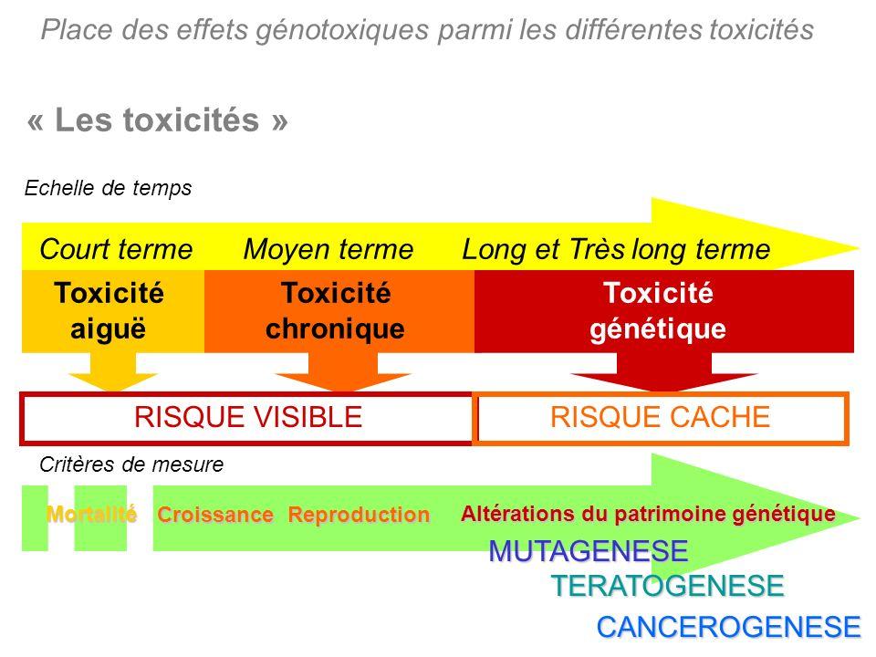 Place des effets génotoxiques parmi les différentes toxicités