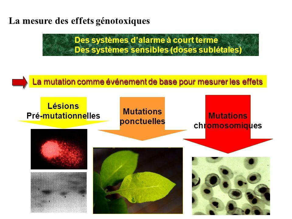 La mesure des effets génotoxiques