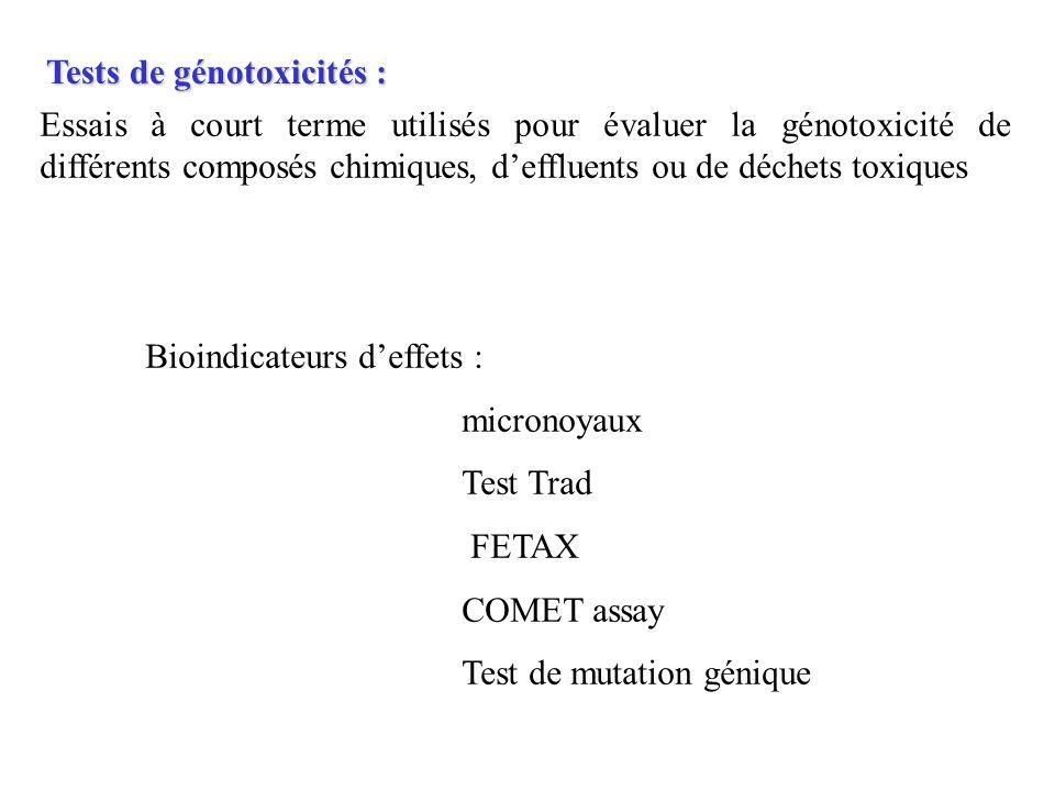 Tests de génotoxicités :