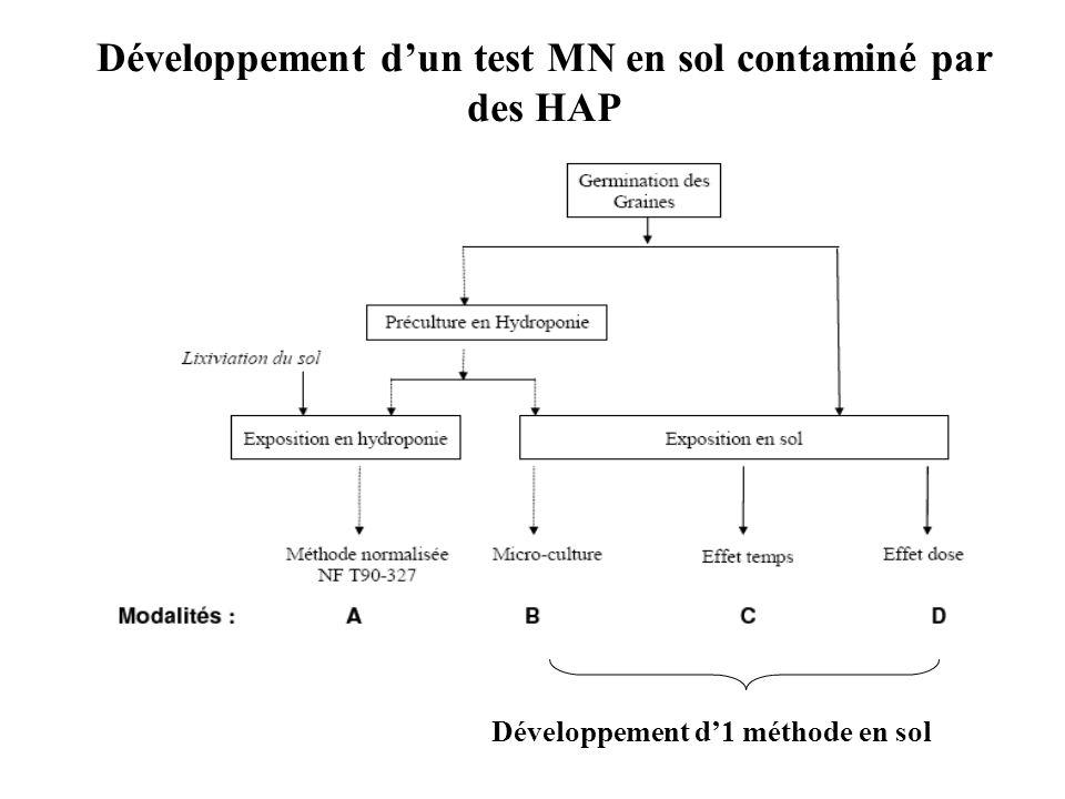 Développement d'un test MN en sol contaminé par des HAP