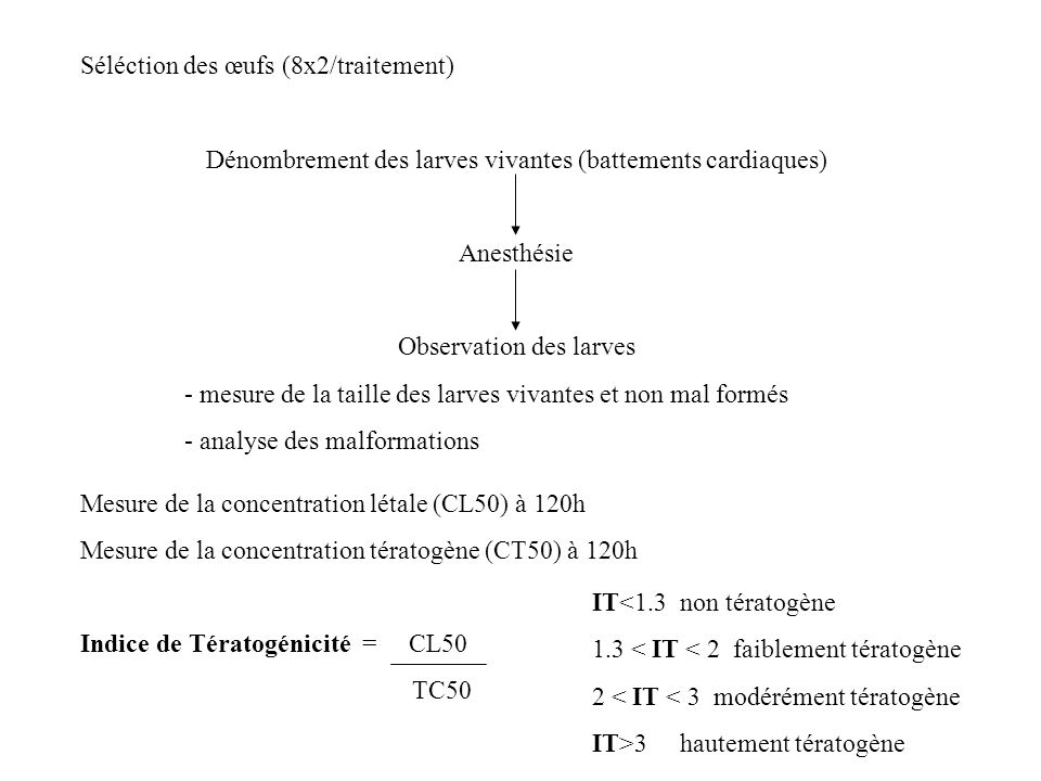 Séléction des œufs (8x2/traitement)