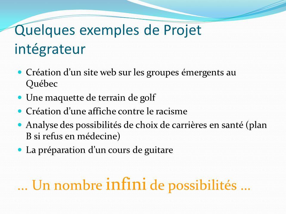 Quelques exemples de Projet intégrateur