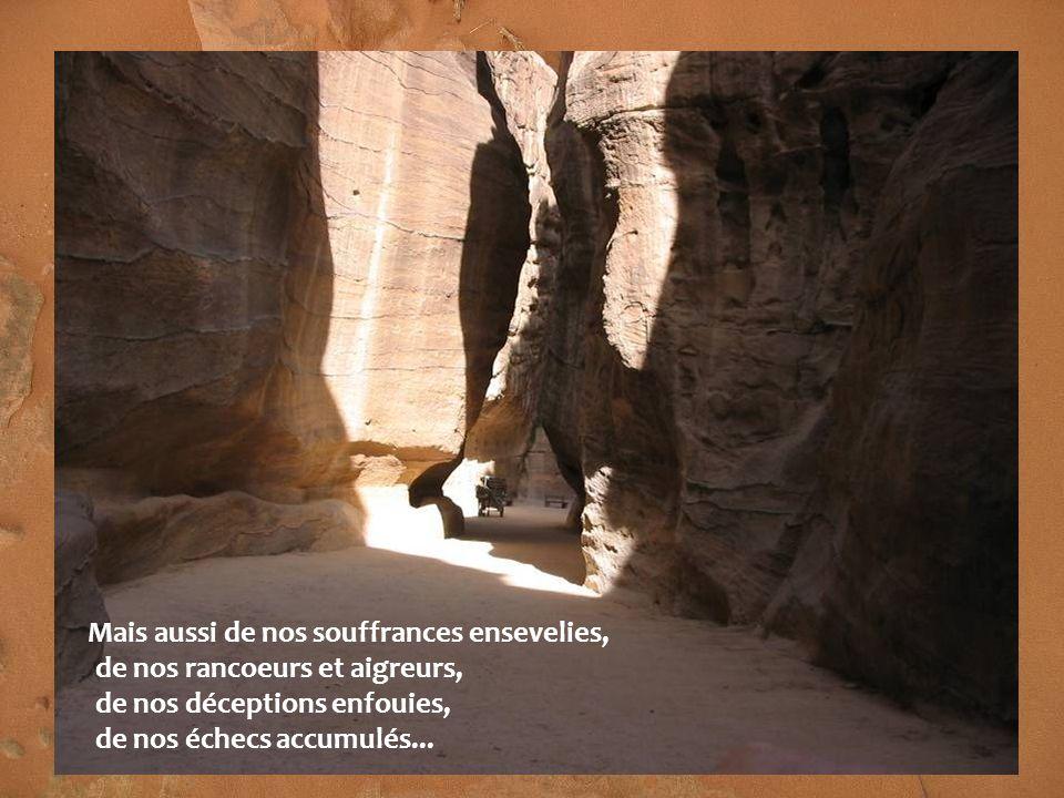 Mais aussi de nos souffrances ensevelies, de nos rancoeurs et aigreurs, de nos déceptions enfouies, de nos échecs accumulés...