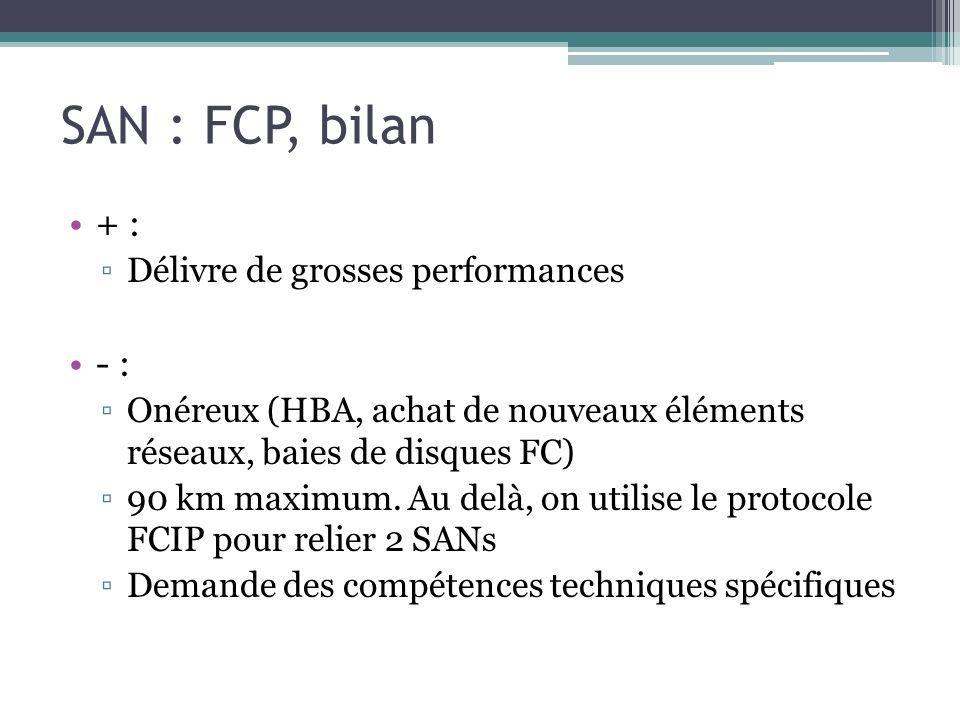 SAN : FCP, bilan + : - : Délivre de grosses performances