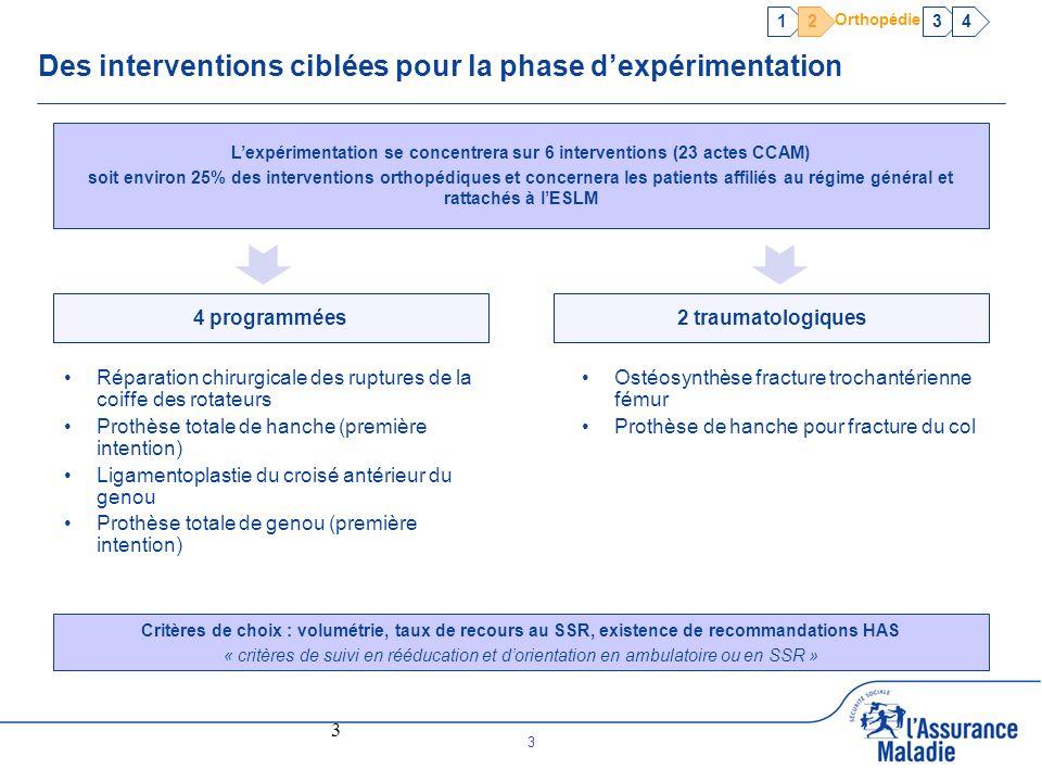 Des interventions ciblées pour la phase d'expérimentation