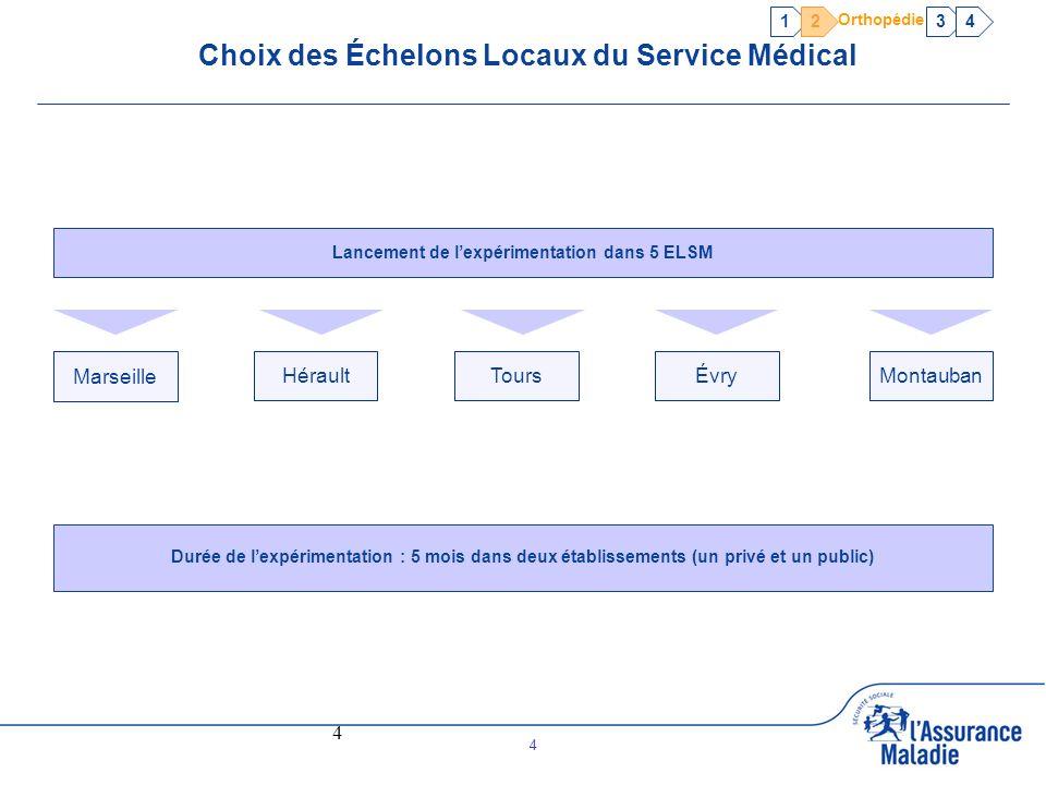 Choix des Échelons Locaux du Service Médical