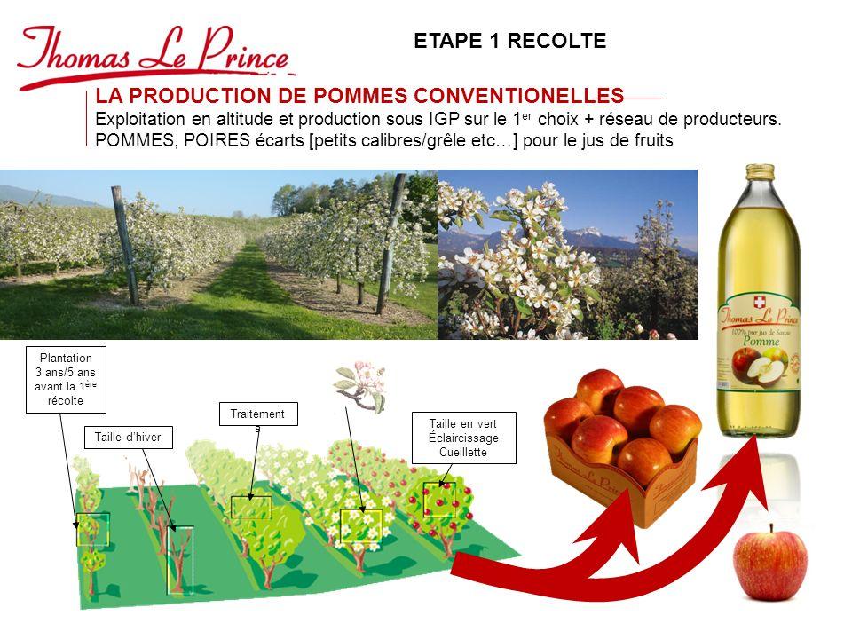 LA PRODUCTION DE POMMES CONVENTIONELLES