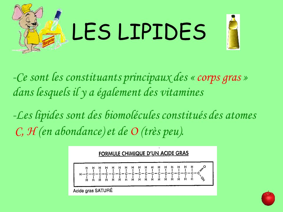 LES LIPIDES -Ce sont les constituants principaux des « corps gras » dans lesquels il y a également des vitamines.