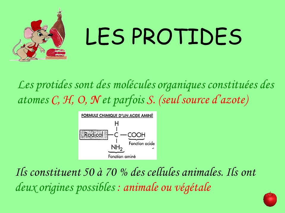 LES PROTIDESLes protides sont des molécules organiques constituées des atomes C, H, O, N et parfois S. (seul source d'azote)