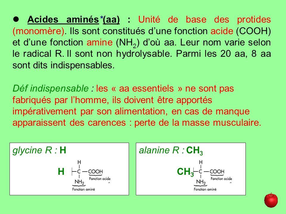  Acides aminés. (aa) : Unité de base des protides (monomère)