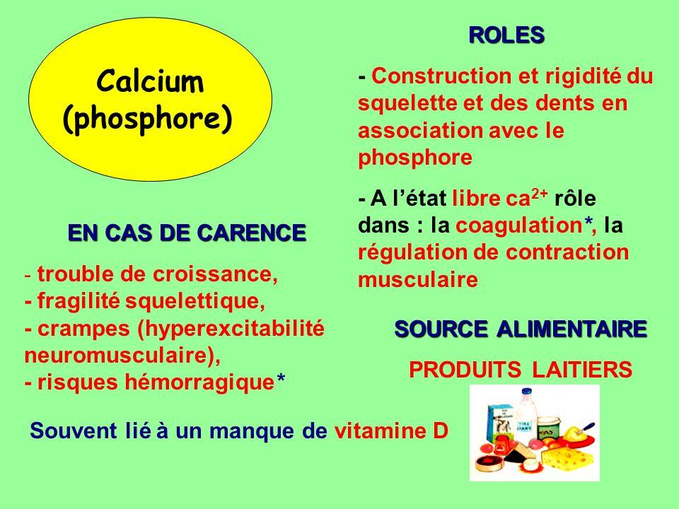 Calcium (phosphore) ROLES